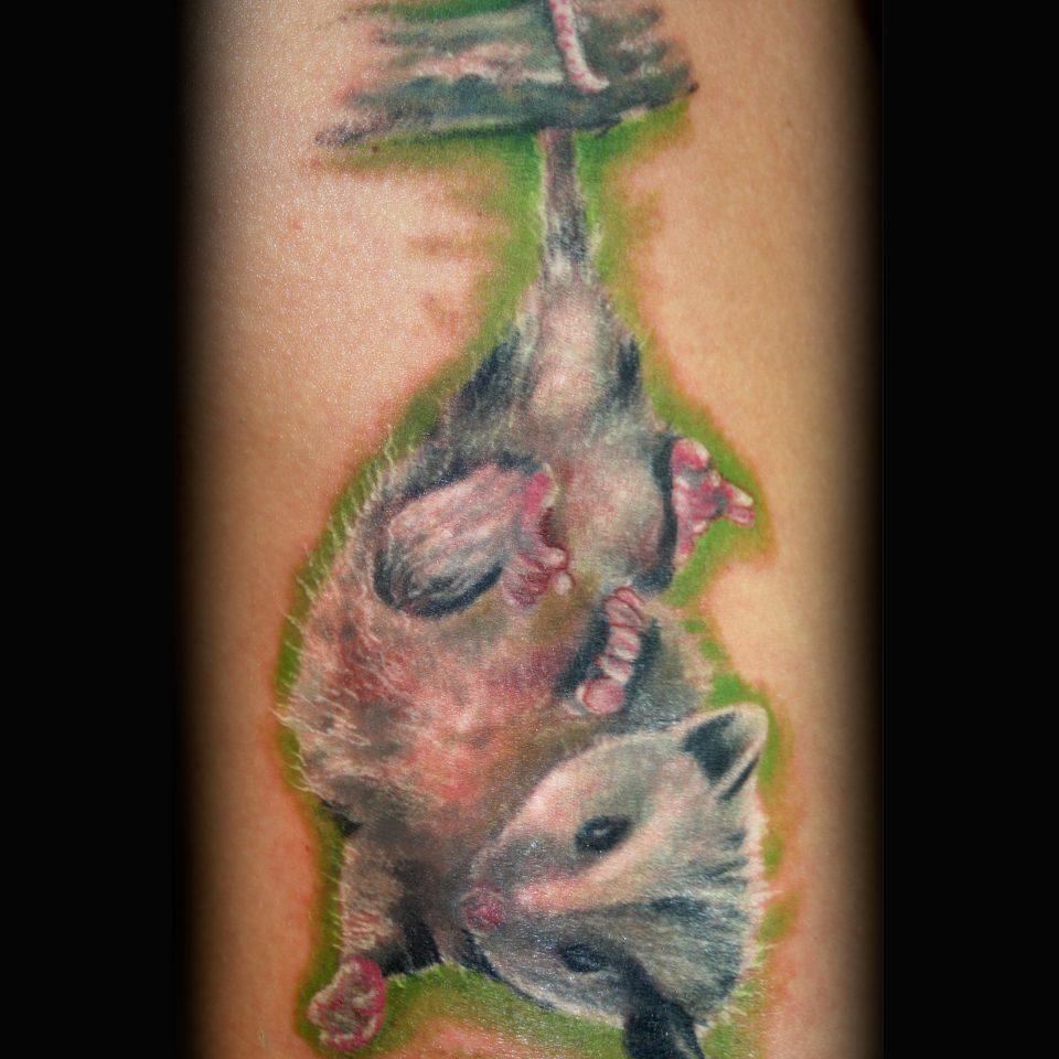 Jason Adkins-Baby opussum-8 x 10 300 dpi