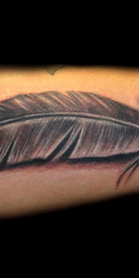 feather 8×10 300 dpi
